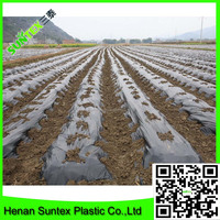 high quality pe film keep warm/plastic black mulch film