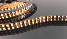 High quality 3528 rgbw double row led strip 240leds/m W/WW color