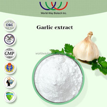 manufacturer supply high quality free samples 100% Natural lipid garlic extract