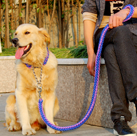 Strong nylon rope metel chain mix two color pet dog lead leash for middle large dog