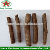 /product-gs/pure-paulownia-tomentosa-roots-cutting-for-getting-plants-60381666990.html
