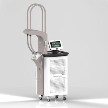 GIGAA BeautySure 1060nm Non-Ablative Lipolysis Laser