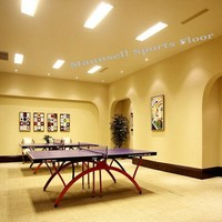 Vinyls/pvc Sports Surface for table tennis Sports Flooring/Mats
