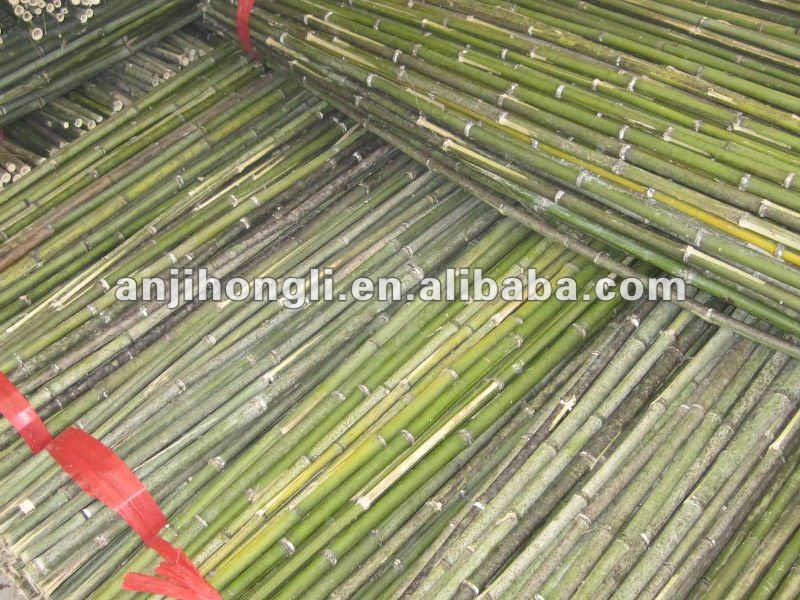 Plant Support Raw Bamboo Cane Sticks