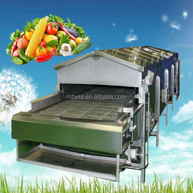 fruits and vegetables dehydration machine