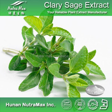 Clary Sage Extract,Clary Sage Extract Powder,Clary Sage P.E.
