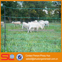 Best sell!Goat mesh fencing,poultry wire fence square hole