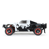 1/5 RC Gas car 4WD ROVAN LT305 large 4WD Truck with 30.5cc petrol engine
