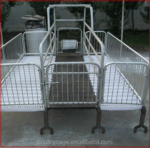 Pig Breeding Equipment Pig Farrowing Cage Pig Farm In India