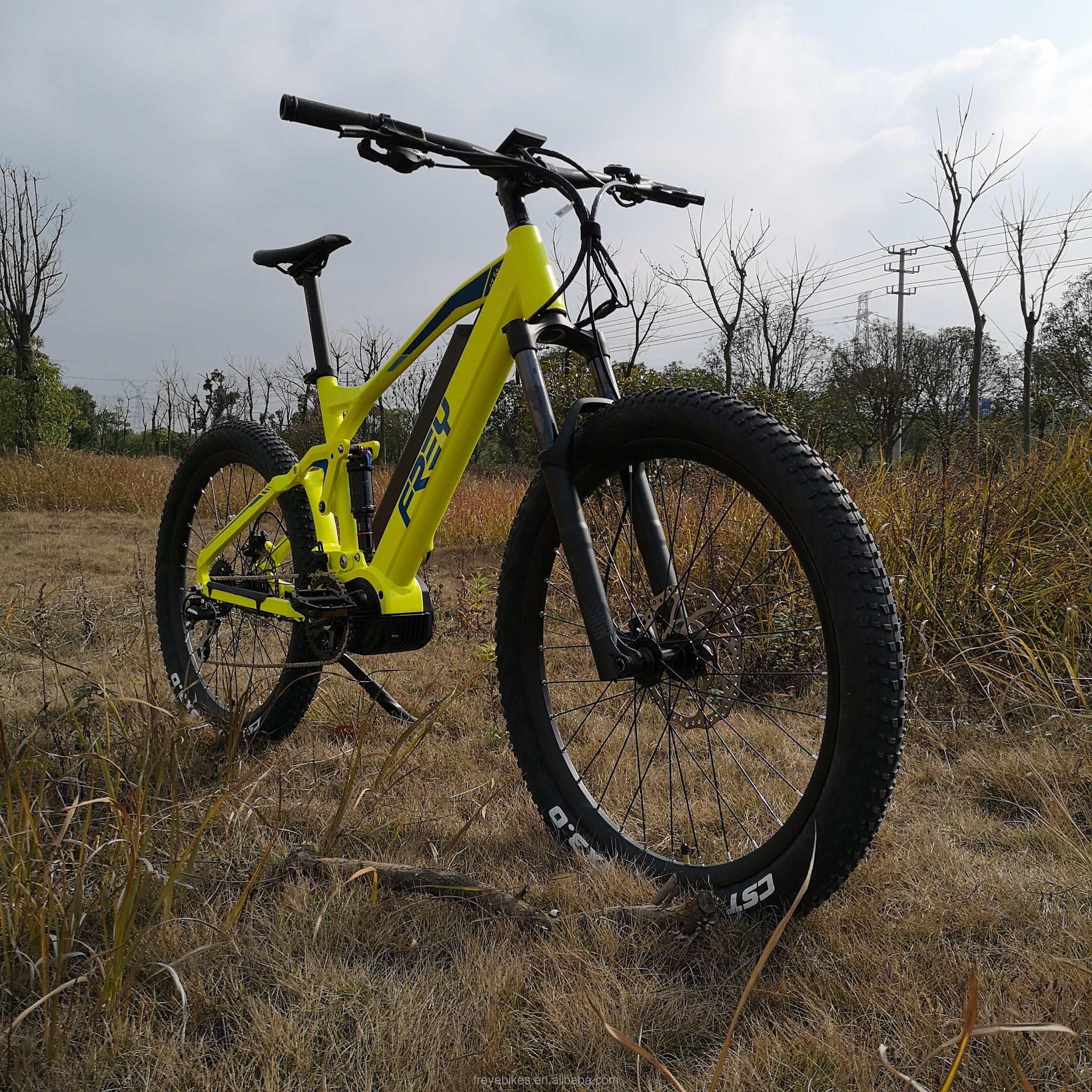 2019 AM1000 EMTB full suspension ebike 1000W Bafang ULTRA G510 mid drive system