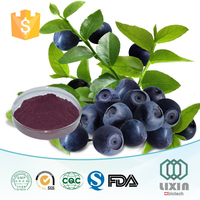 GMP certified manufacture 100% Natural High quality Acai Berry Extract powder 4:1 10:1/ OEM capsules
