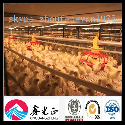 design Industrial Poultry farm layer chicken breeding cages