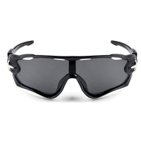Outdoor Riding Glasses Polarized Sunglasses Goggles Windproof Interchangeable Lenses Cycling Eyewear