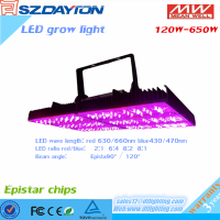 120w led grow light factory hydroponic strawberries inspire lamps
