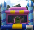 Cute inflatable used bouncy castles for sale/naughty castle for sale