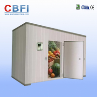 Walk In Cold Room For Storage Meat