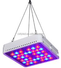 Switchable growing & flowering circle 5watt diodes LED Grow Light 200W super par value growing LED lamp Kit