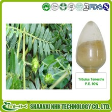2015 Factory best price hot selling tribulus terrestris extract , tribulus terrestris seed extract in bulk