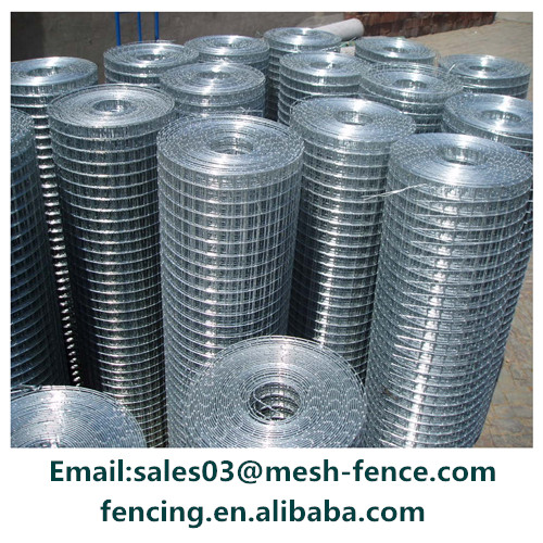 metal stainless steel galvanized welded wire mesh for filter tube