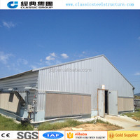 Poultry farm equipment multifunctional poultry chicken shed