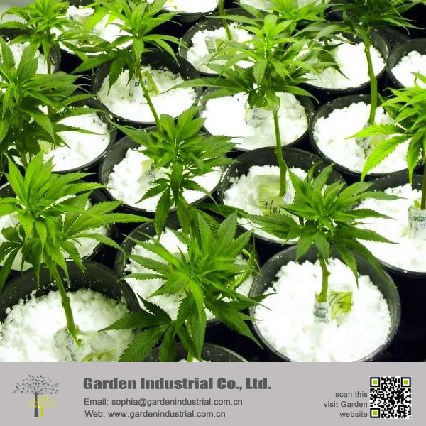 Hydroponic Growing Media Perlite