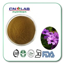 best selling echinacea angustifolia root extract