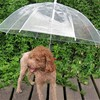 Pet Dog Umbrella, Sun Dog umbrella