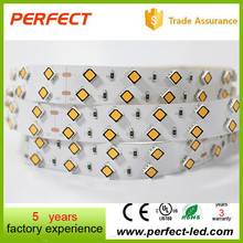 Best Seller 5M Per Roll 100 Leds/m 24V SMD 5050 Black Flexible Led Strip -Doule Row