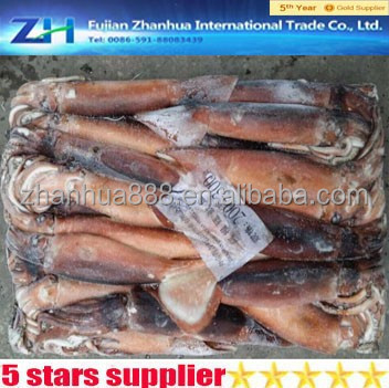 wholesale fresh sea frozen squid ink