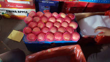Fresh Style and Pome Fruit Product Type fresh red Fuji apple for sale