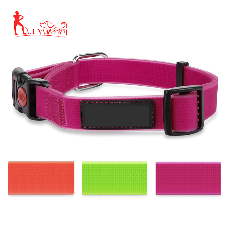 Pet Supplies PVC coated ribbon waterproof dog collar with safety lock buckle