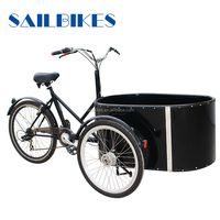 cheap price electric tricycle with round cargo box