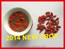 HACCP ISO HALAL High Quality Sun Dried Goji Berry