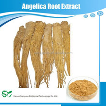 5:1 brown powder Root Angelica dahurica Extract