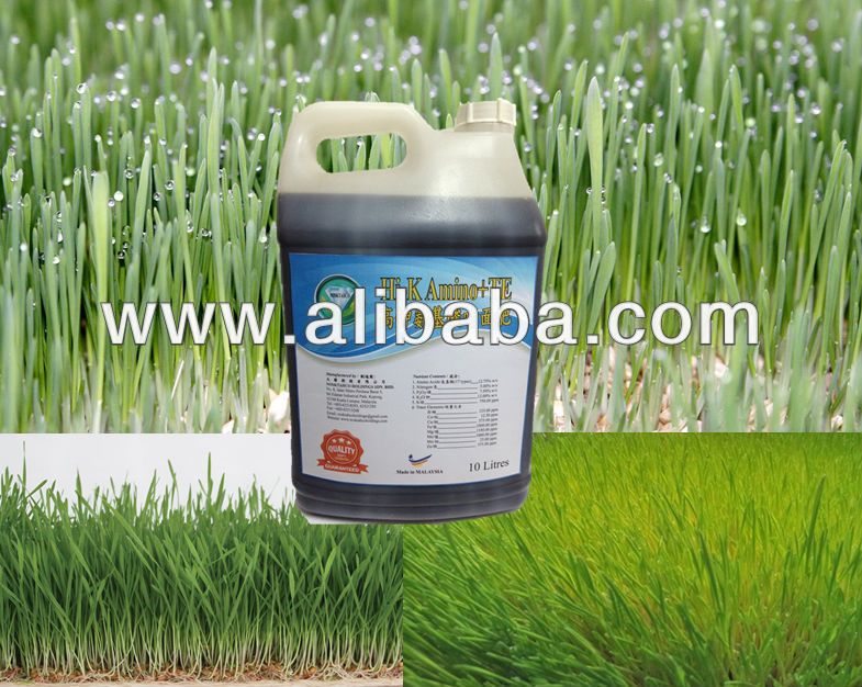 Hi-K AMINO + TE Liquid Fertilizer - The Best Choice for Improving Quality of Fodder, Napier & Increasing it's Crude Protein