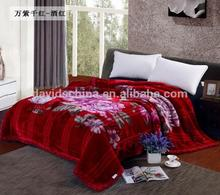 Wholesale China Made 2ply Thicken Mink Mexican Blanket