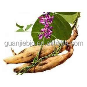Best Sells Product Kudzu Root Extract / Natural Pueraria Root extract powder / Total isoflavones > 40%