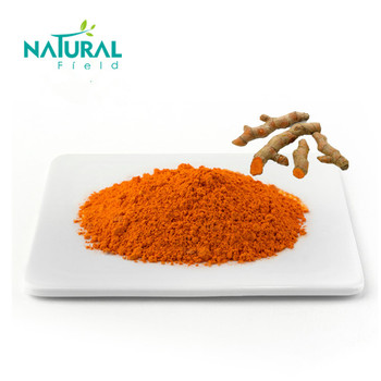 Hot Selling Curcuma Longa L Extract Curcumin Powder