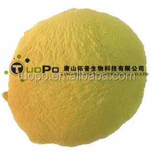 poultry feed ingredients feed yeast powder