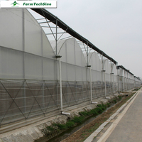 Farmtechsino Agriculture Plastic Tunnel Green House