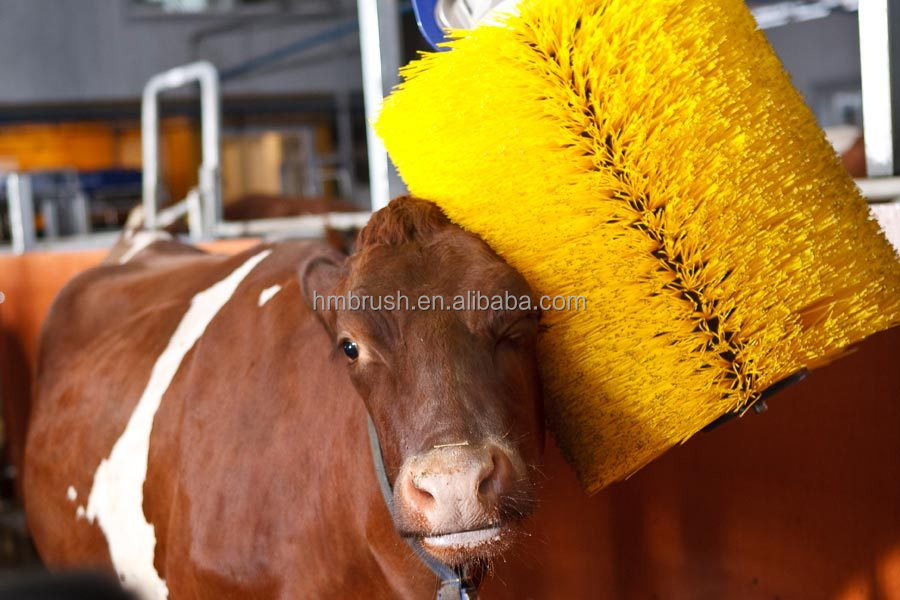 Cow Body Brush manufacturer in China