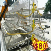 chicken layer cage price for 1000 to 10000 birds