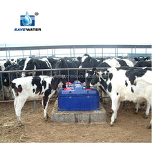 Frost free Auto Drinking Water trough for Livestock farm equipment