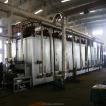 Chinese dryer equipment manufacture mesh belt dryer for fruit and vegetables on sale