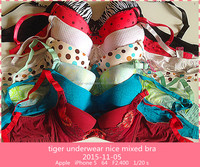 2015 New mixed design mixed size Super Hot Latest Fashion Bra