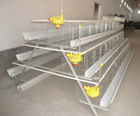 Chicken Egg Laying Equipment/Chicken Egg Layer Cages