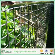 clematis climbing support and plastic mesh boundary fences