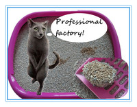Cats Application irregular broken cat litter