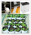 Easy lift plastic grow bags poly growing bags