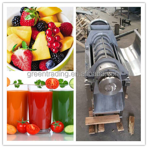 Commercial use blueberry pulping machine
